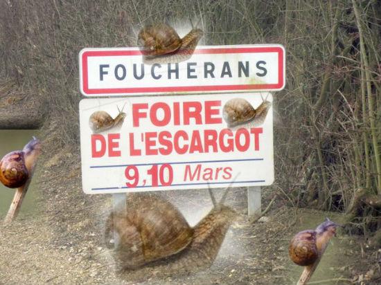 Foire affiche village