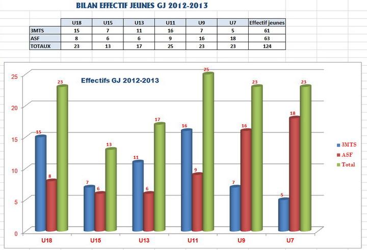 Bilan effectifs GJ 2012-13